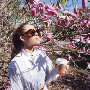 5 Ways to get SpringReady